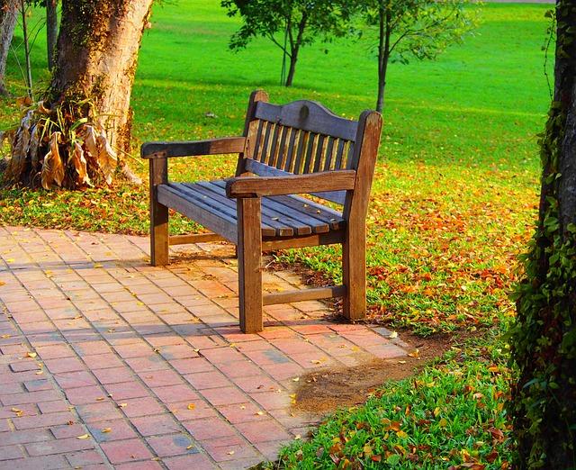 Park Bench in Wascana Center
